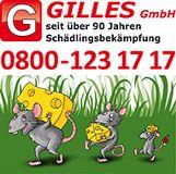 Gilles Schädlingsbekämpfung Trier